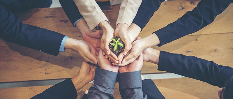Les entreprises se mettent au vert (RSE)