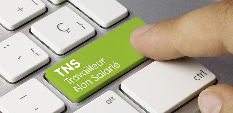 Le travailleur non salarié (TNS) et l'assurance volontaire individuelle